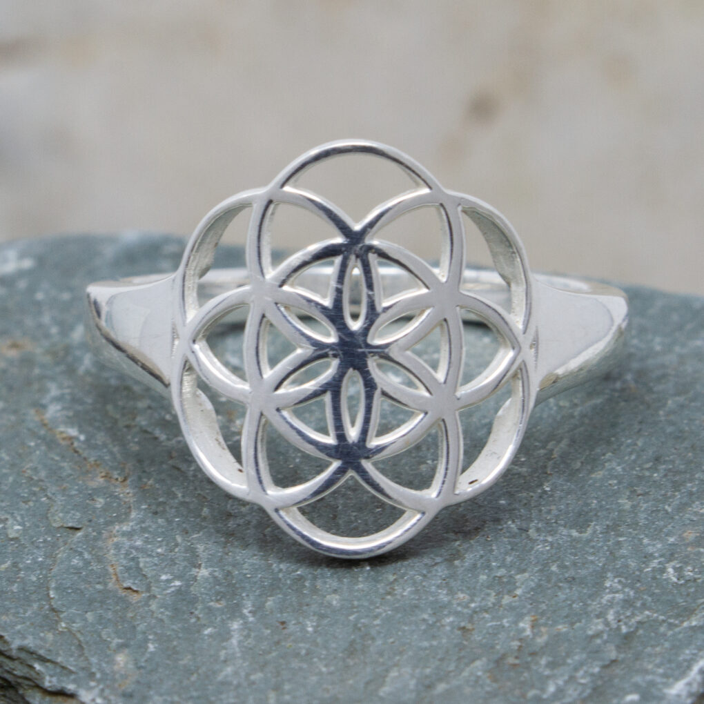 unusual Circle Of Life Ring